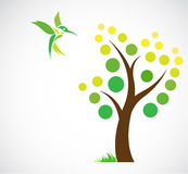Vector design of trees and hummingbird Royalty Free Stock Image