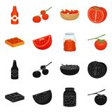 Isolated object of vegetable and delicious icon. Collection of vegetable and natural vector icon for stock. royalty free illustration