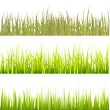 Vector determinado del modelo de la hierba Imagen de archivo libre de regalías
