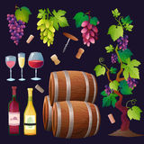 Vector determinado del vino Fotografía de archivo libre de regalías