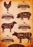 Vector diagram cut carcasses. Of chicken, pig, cow, lamb Royalty Free Stock Photo