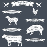 Vector diagram cut carcasses of chicken, pig, cow Stock Image