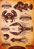 Vector diagram cut carcasses seafood Stock Images