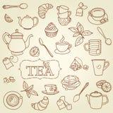 Vector dibujado mano del concepto del garabato del té Foto de archivo libre de regalías