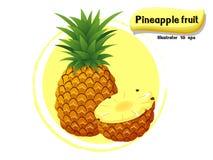 Vector die Ananasfrucht, die auf Farbhintergrund, Illustrator 10 ENV lokalisiert wird Lizenzfreie Stockfotografie