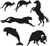 Vector dieren Royalty-vrije Stock Foto
