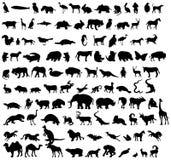 Vector dierlijke silhouetten Stock Afbeeldingen