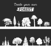 Vector different trees silhouettes. Create your own forest. Black woods icons set. Grove constructor. Vector different trees silhouettes. Create your own forest Stock Photography