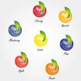 Vector diverse vruchten pictogrammen Stock Afbeeldingen