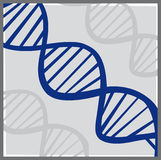 Vector DNA Stock Photography