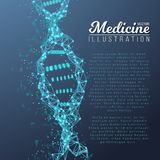 Vector DNA Spiral. Medical Molecule Structure. Illustration of Vector DNA Spiral. Abstract Medical Molecule Structure. Future Medicine Technology Human Genome Royalty Free Stock Images