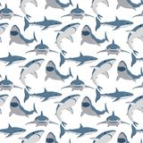 Vector do tubarão irritado toothy da natação da ilustração a mascote marinha debaixo d'água bonito animal dos animais selvagens d ilustração do vetor