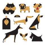 Vector Dog vector illustration