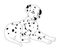 Vector dog. Isolated on the white vector illustration