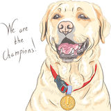 Vector dog breed Labrador Retriever champion Royalty Free Stock Photography