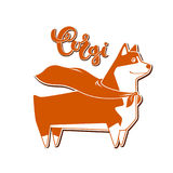 Vector dog corgi in hero cape. Breed inscription in calligraphy handmade design. Royalty Free Stock Image