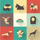 Vector Dog Stock Photo