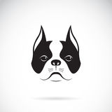 Vector of a dog face. Stock Image