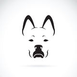 Vector of a dog face on white background. Pet. Royalty Free Stock Photo