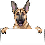 Vector Dog German shepherd breed smiles Stock Images