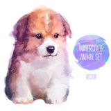 Vector dog hand painted watercolor illustration