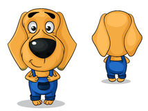 Vector dog in pants Stock Images