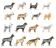 Vector dog silhouettes collection  on white Stock Image