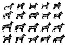 Vector dog silhouettes collection on white. Dogs breeds. Vector dog breeds silhouettes collection on white. Dog icons collection for cynology, pet clinic and pet
