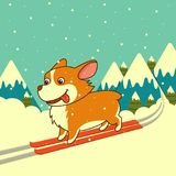 Vector dog skiing on winter mountains background. Welsh corgi dog. For Xmas, New Year poster, calendar. Vector dog skiing on winter mountains background. Welsh Royalty Free Stock Photography