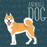 Vector Dogs Collection Stock Image