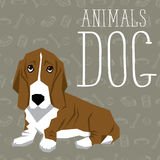 Vector Dogs Collection. Vector geometric dogs collection with seamless background. Basset Hound Stock Photo