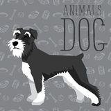 Vector Dogs Collection Royalty Free Stock Photo
