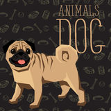 Vector Dogs Collection. Vector geometric dogs collection with seamless background. Pug Royalty Free Stock Image