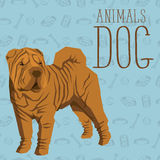Vector Dogs Collection Royalty Free Stock Photos