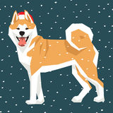 Vector Dogs Collection Stock Photography