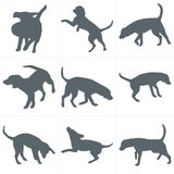 Vector dogs silhouettes. Set of dog silhouettes play and have fun outdoors Royalty Free Stock Photos