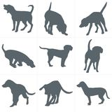 Vector dogs silhouettes. Set of dog silhouettes play and have fun outdoors Stock Image