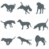 Vector dogs silhouettes. Set of dog silhouettes play and have fun outdoors Royalty Free Stock Images