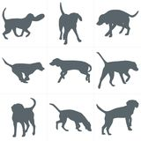 Vector dogs silhouettes. Set of dog silhouettes play and have fun outdoors Stock Images