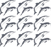 Vector dolphin pattern Royalty Free Stock Photo