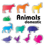 Vector domestic animals silhouettes Royalty Free Stock Images