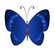 Vector donkerblauwe vlinders Stock Fotografie