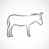 Vector of a donkey on white background. Royalty Free Stock Photos