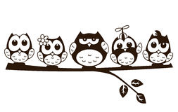 Vector doodle cartoon cute owl in various character Stock Images