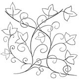 Vector doodle floral pattern. 11 Royalty Free Stock Image