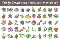 Vector doodle icons set. Vector doodle fruits, flowers and trees icons set. Stock cartoon signs for design Stock Photo