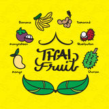 Vector : Doodle style of many kind of Thai fruit on yellow leaf Royalty Free Stock Photography