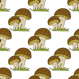 Vector doodle style seamless pattern with forest mushrooms. Stock Photo
