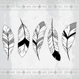 Vector Doodle Stylized Feather Background Stock Photography