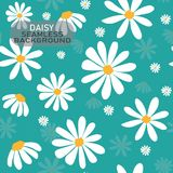 Vector doodle white daisy flower pattern on pastel mint green background, seamless background. Vintage style royalty free illustration